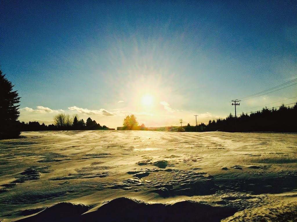 Soleil d'hiver / Winter sun